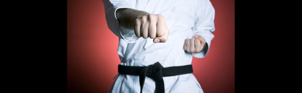karate_slider1