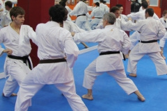 karate_kata2
