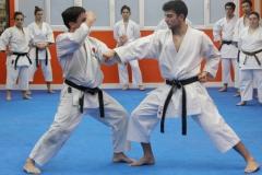 karate_kumite