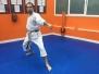 kihon: posiciones/técnicas